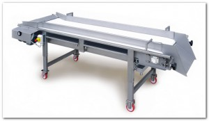 Enoveneta_belt sorting table - Grape Sorting